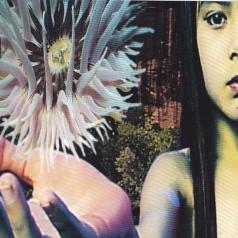 The Future Sound Of London: Lifeforms