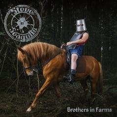 Steve'n'Seagulls: Brothers In Farms
