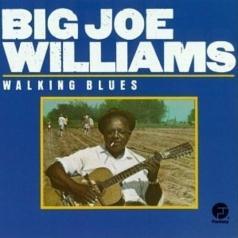 Big Joe Williams (Биг Джо Уильямс): Walking Blues