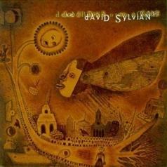 David Sylvian (Дэвид Силвиан): Dead Bees On A Cake