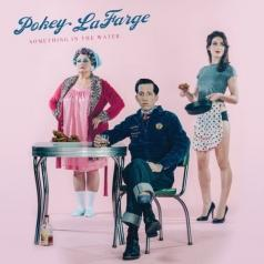 Pokey LaFarge (Поки Лафарж): Something In The Water