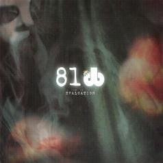 81DB: Evaluation