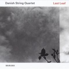 Danish String Quartet (Даниш Стринг Квартет): Last Leaf