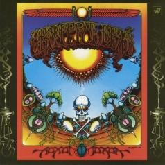 Grateful Dead (Грейтфул Дед): Aoxomoxoa
