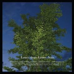 Loney Dear (Лоней Деар): Loney, Noir