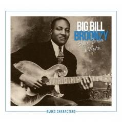 Big Bill Broonzy (Биг Билл Брунзи): Black, Brown & White