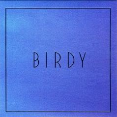Birdy (Берди): Lost It All