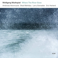 Wolfgang Muthspiel (Вольфганг Мутшпиль): Where The River Goes
