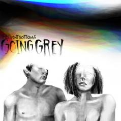 The Front Bottoms: Going Grey