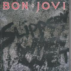Bon Jovi (Бон Джови): Slippery When Wet