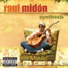 Raul Midon (Рауль Мидон): Synthesis