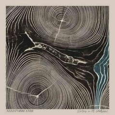 Needtobreathe: Rivers In The Wasteland