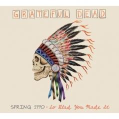 Grateful Dead: Spring 1990: So Glad You Made It