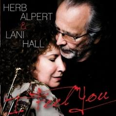 Herb Alpert (Герб Алперт): I Feel You