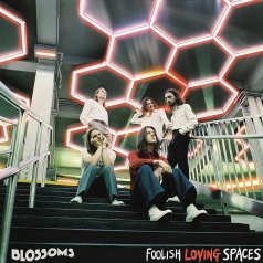 Blossoms (Блоссомс): Foolish Loving Spaces