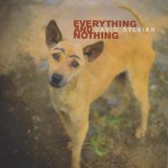 David Sylvian (Дэвид Силвиан): Everything & Nothing