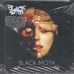 Black Moth (Блэк Мотх): Anatomical Venus