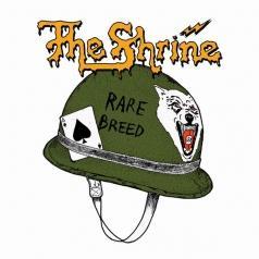 The Shrine: Rare Breed