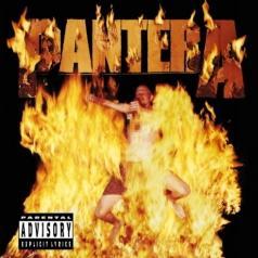 Pantera (Пантера): Reinventing The Steel