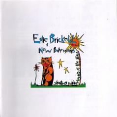 Edie Brickell (Эди Брикелл): Shooting Rubberbands At The Stars