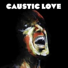 Paolo Nutini (Паоло Нутини): Caustic Love