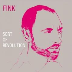 Fink (Финк): Sort Of Revolution