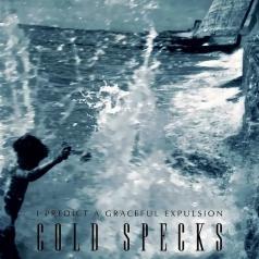 Cold Specks (Колд Спикс): I Predict A Graceful Expulsion