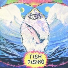 Steve Hillage (Стив Хиллидж): Fish Rising