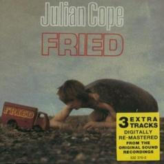 Julian Cope (Джулиан Коуп): Fried