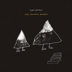 Sam Amidon (Сэм Амидон): The Following Mountain