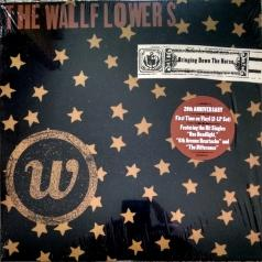 The Wallflowers: Bringing Down The Horse