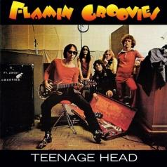 The Flamin Groovies (Зе Фламин Гроовиес): Teenage Head