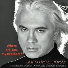 Dmitri Hvorostovsky (Дмитрий Хворостовсикий): Where Are You, My Brothers