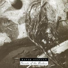 David Sylvian (Дэвид Силвиан): Secrets Of The Beehive