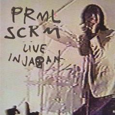 Primal Scream (Примал Скрим): Live In Japan