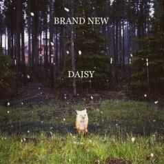 Brand New (Бренд Нью): Daisy
