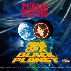 Public Enemy (Паблик Энеми): Fear Of A Black Planet