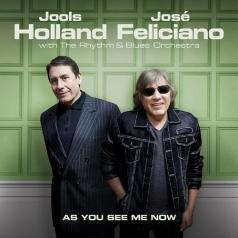 Jools Holland (Джулс Холланд): As You See Me Now