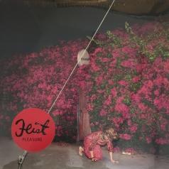 Feist (Лесли Файст): Pleasure