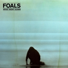 Foals (Фоалс): What Went Down