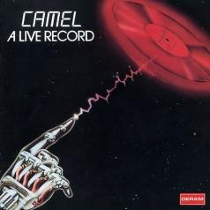 Camel Live