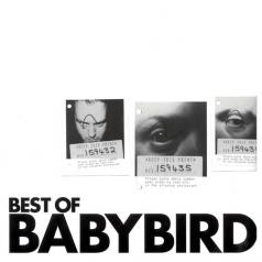 Best Of Babybird