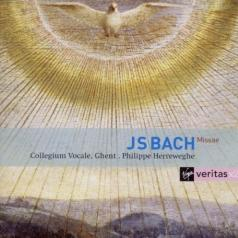 Masses Bwv 233-235, Sanctus Bwv 238