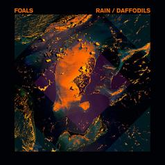 Rain / Daffodils