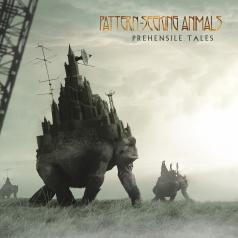 Pattern-Seeking Animals: Prehensile Tales