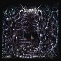 Unanimated: In The Forest Of The Dreaming Dead