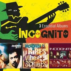 Incognito (Зе Инкогнито): 3 Essential Albums