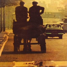Ronnie Lane (Ронни Лэйн): Anymore For Anymore