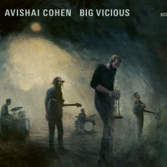 Avishai Cohen (Авишай Коэн): Big Vicious