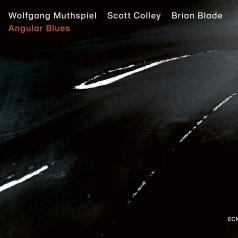 Wolfgang Muthspiel (Вольфганг Мутшпиль): Angular Blues